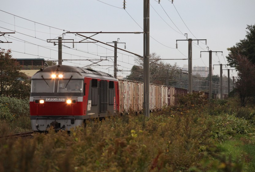 DF121IMG_7015-2.jpg