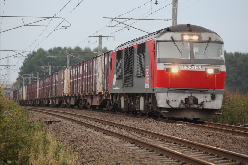 DF51IMG_7013-2.jpg