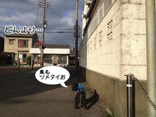 20140211210027aa2.jpg