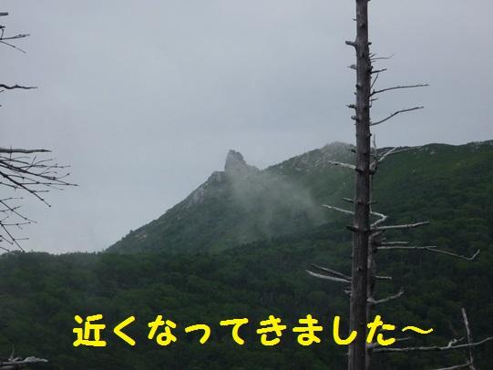 20131123150644023.jpg
