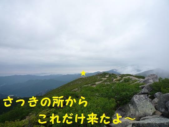 201311231511025d8.jpg