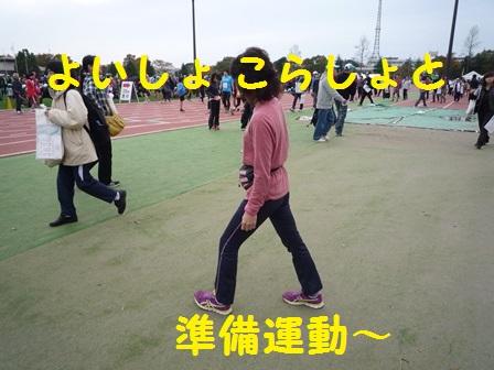 201311231603461aa.jpg