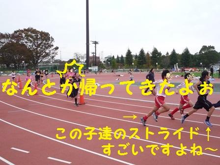 20131123161113eed.jpg