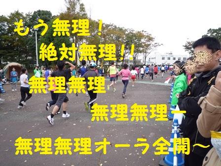 20131123161116fe4.jpg