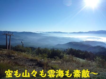 20131124145136130.jpg