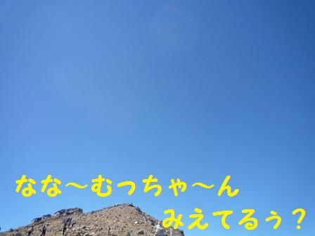 20131124145427010.jpg
