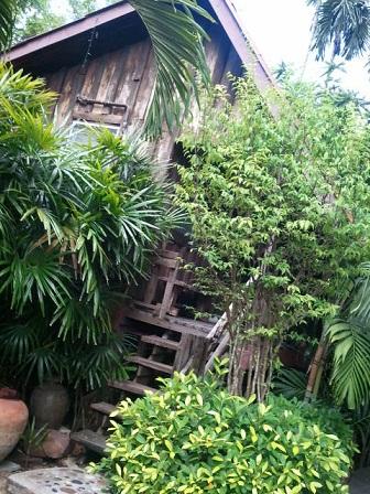 タイで断食3日間 エネマ 3