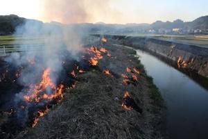 河原の野焼き