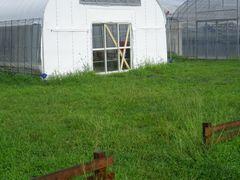 [写真]台風対策を入口ドアに施した受付ハウスの様子