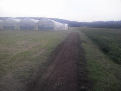 [写真]ベアハウスの奥に耕したキンセンカの花畑予定地の様子