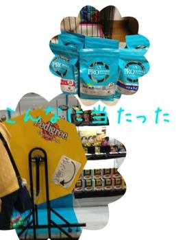 fc2blog_20130406204033483.jpg