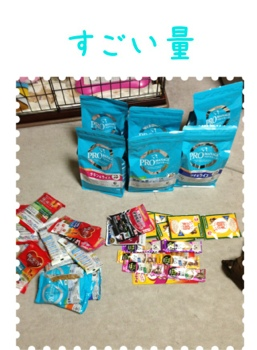 fc2blog_20130406204128cfa.jpg