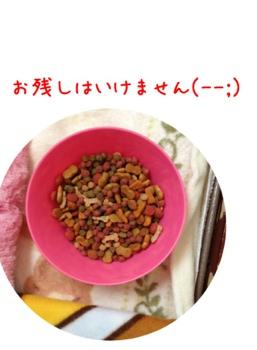 fc2blog_20130410172958a7d.jpg