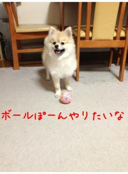 fc2blog_2013041115000499e.jpg