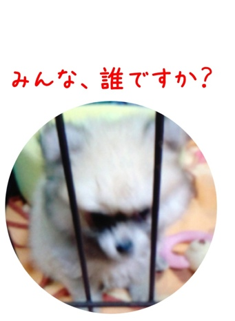 fc2blog_20130417162733937.jpg