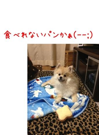 fc2blog_20130418182408224.jpg