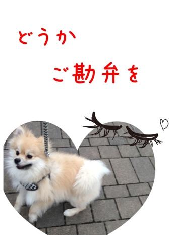fc2blog_20130419152556a83.jpg