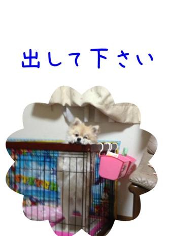 fc2blog_201304200958209b8.jpg