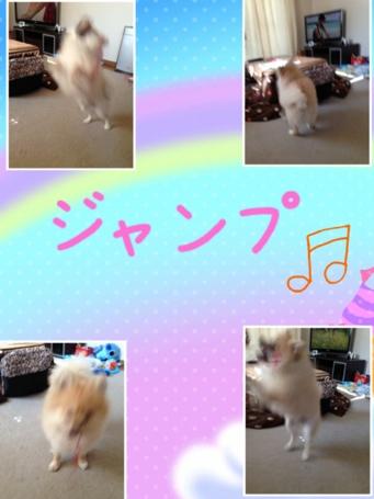 fc2blog_20130504110124e2e.jpg