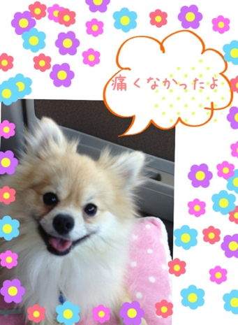 fc2blog_20130507123419289.jpg