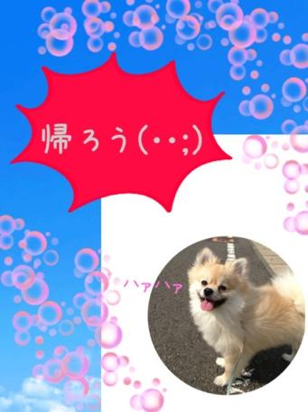 fc2blog_20130510152025890.jpg