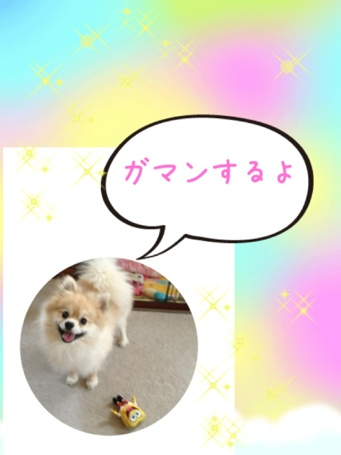 fc2blog_201305111959160eb.jpg