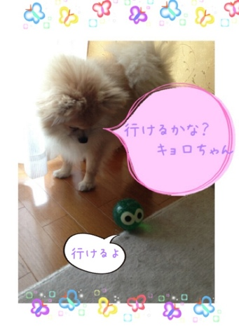 fc2blog_201305201719556e0.jpg