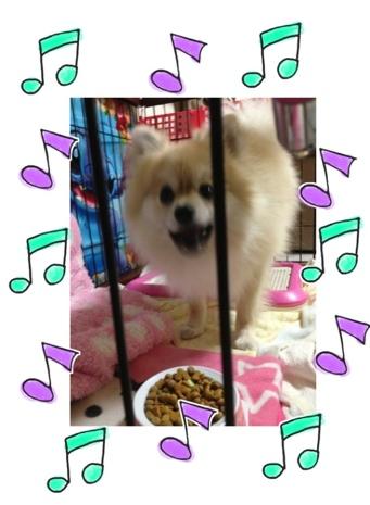 fc2blog_20130522214241cb9.jpg