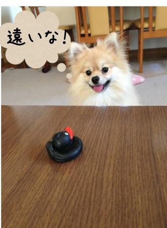 fc2blog_201305271739517ac.jpg