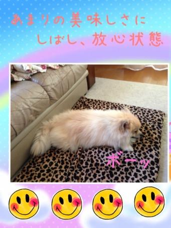 fc2blog_201306051732555e0.jpg