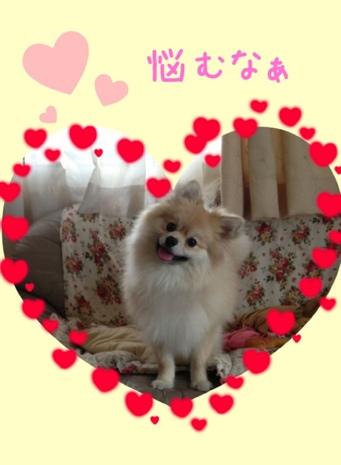 fc2blog_2013060617383422c.jpg