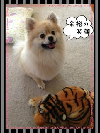 fc2blog_20130622152610fd3.jpg