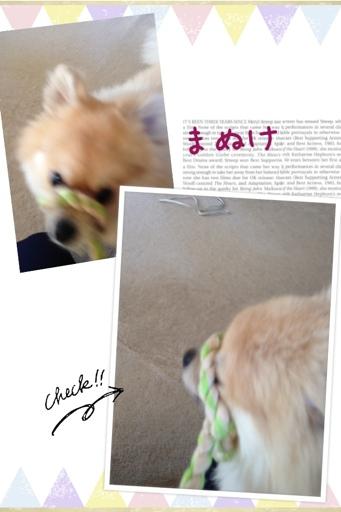 fc2blog_201306242010458b1.jpg