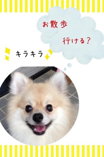 fc2blog_2013070720594810e.jpg