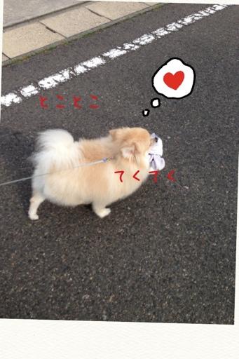 fc2blog_20130712182854ddf.jpg