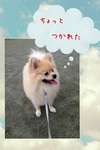 fc2blog_20130723195324fda.jpg