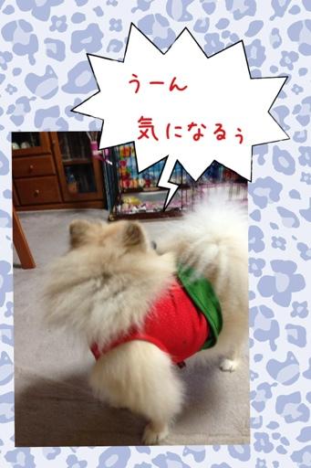 fc2blog_20130726204604ae4.jpg
