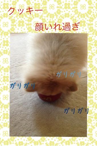 fc2blog_20130727143446396.jpg