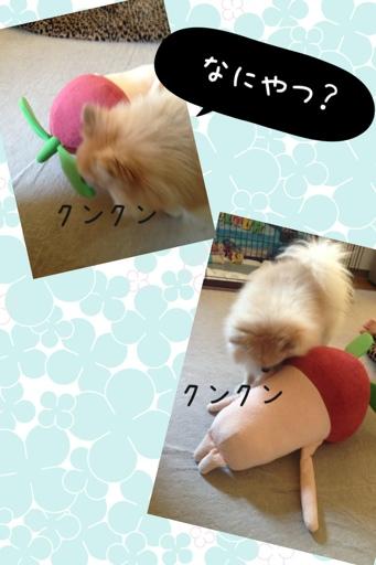fc2blog_20130803203641e5d.jpg