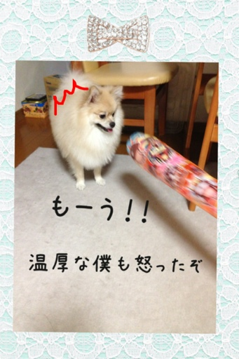 fc2blog_201308062155049d6.jpg
