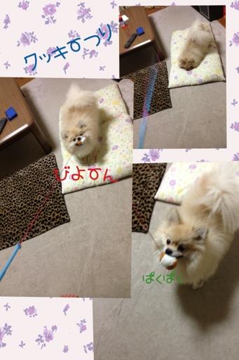fc2blog_20130809214054364.jpg