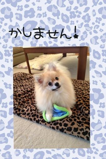fc2blog_20130822195050857.jpg