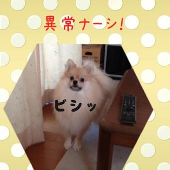 fc2blog_201308311645346e5.jpg