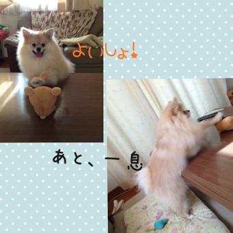 fc2blog_20130901215938a11.jpg