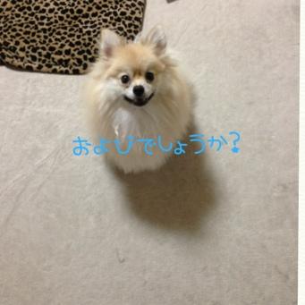 fc2blog_20130904224446bb7.jpg
