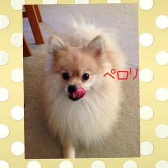 fc2blog_20130909194046928.jpg