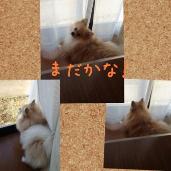 fc2blog_20130919211930ae6.jpg