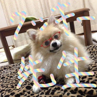 fc2blog_201309241114269f7.jpg