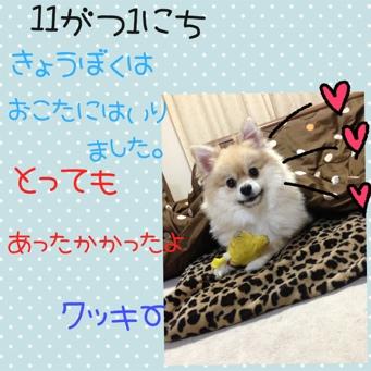 fc2blog_20131101191014cef.jpg