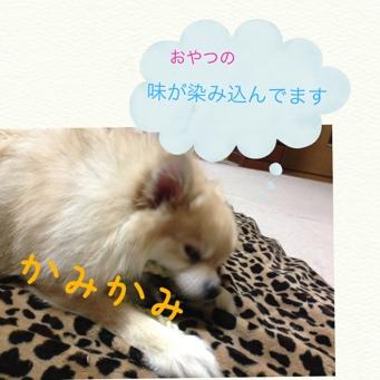 fc2blog_201311162100205fa.jpg